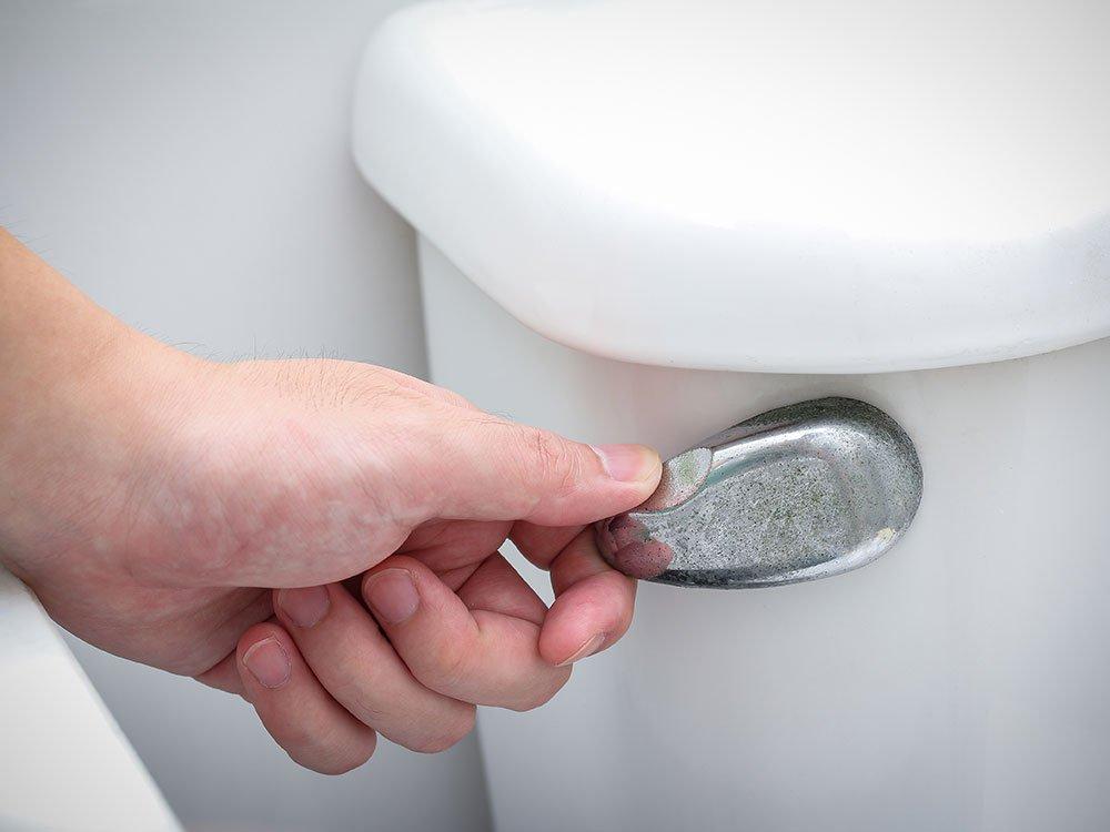 トイレ 紙が流せない