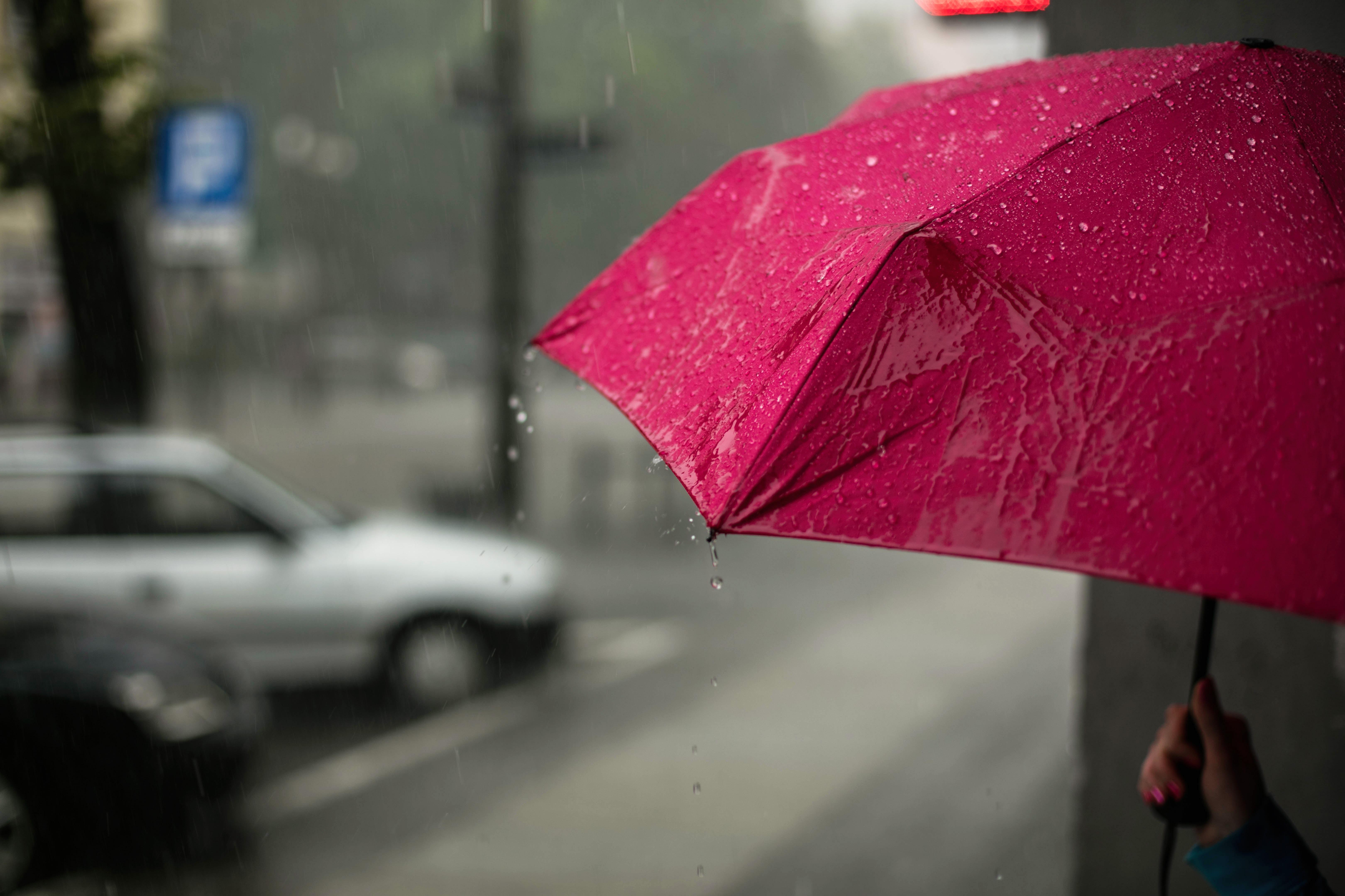 折りたたみ傘 必需品