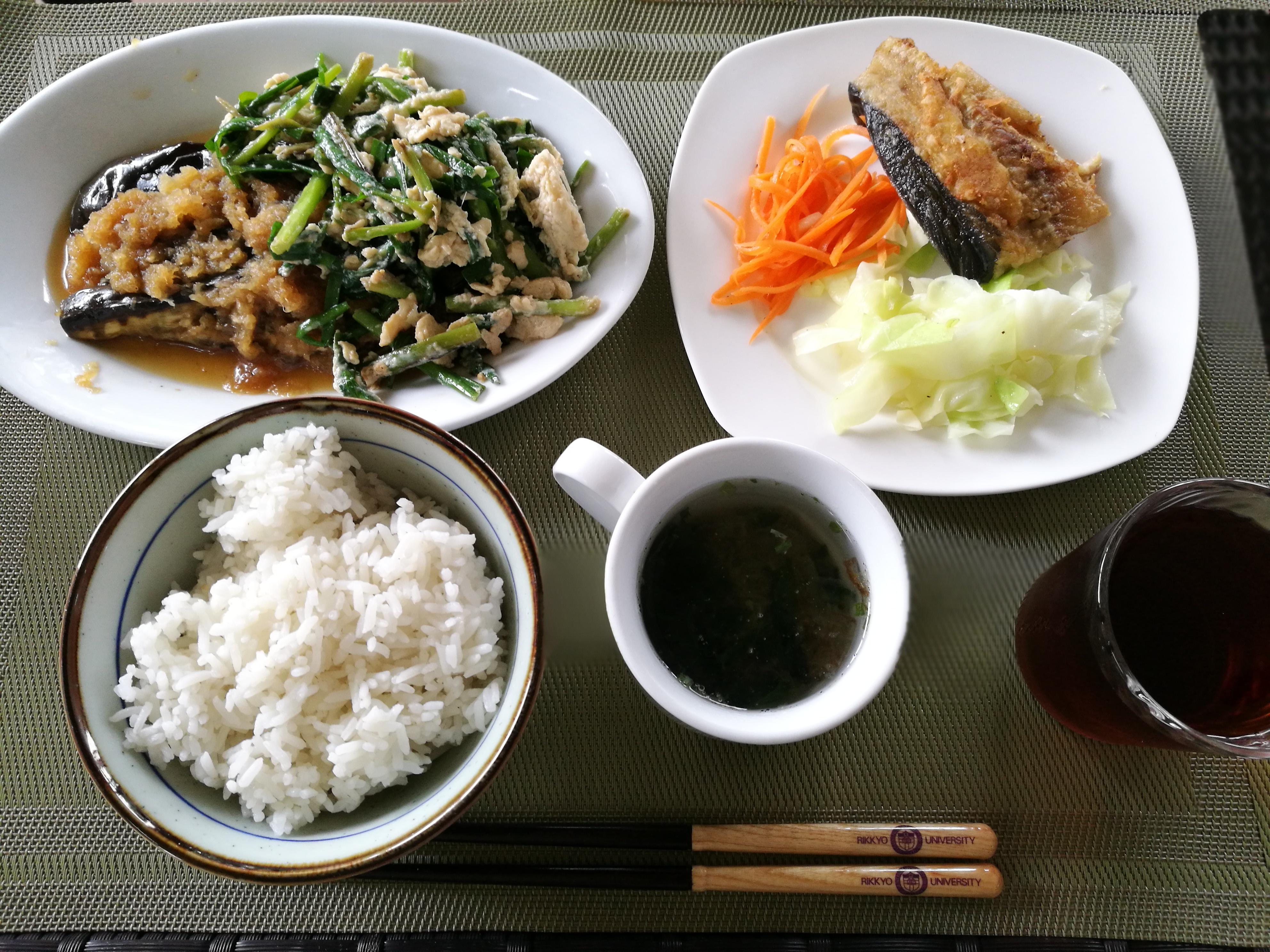 食事 料理