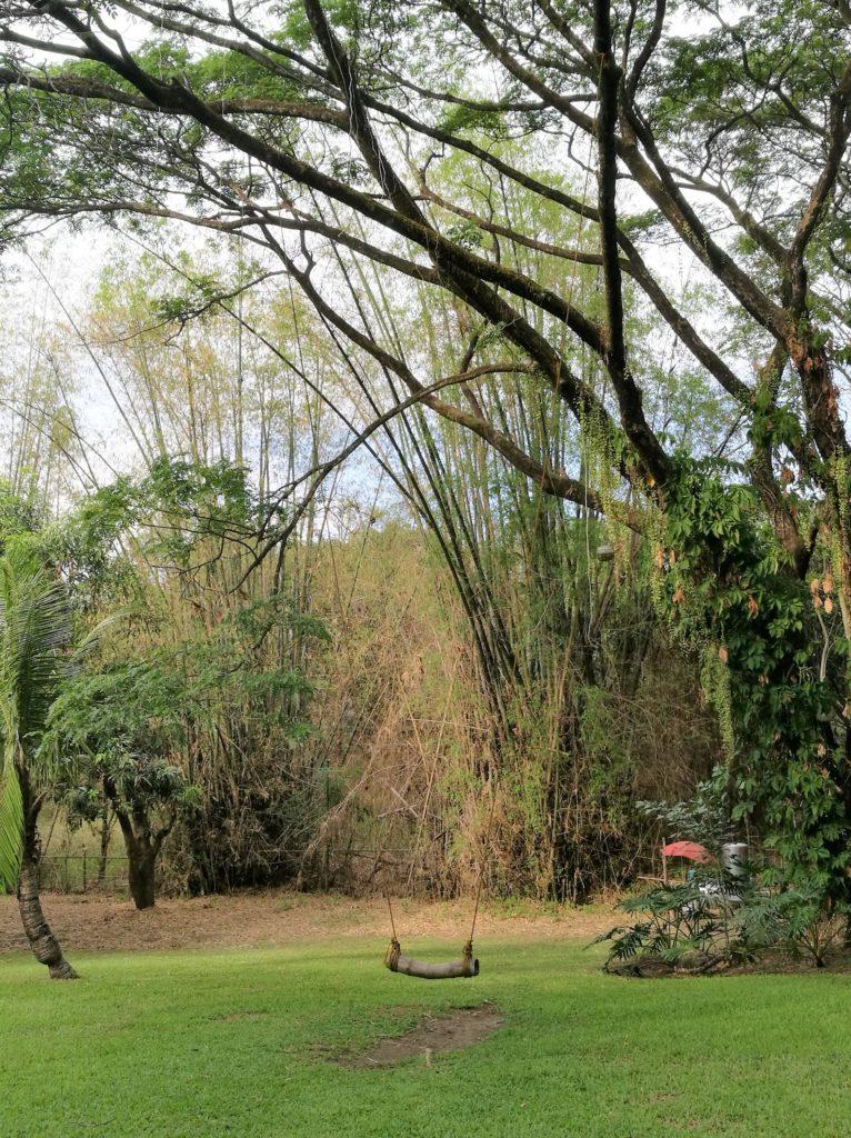 木のブランコ